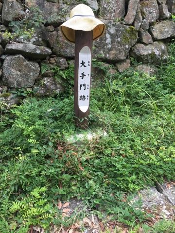 sumoto_castle1